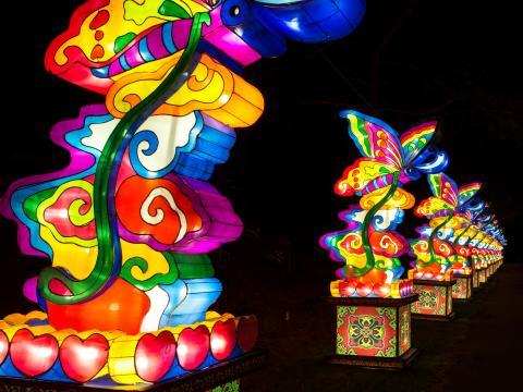チャイニーズ・ランタン・フェスティバルで一列に並ぶ色鮮やかなランタン