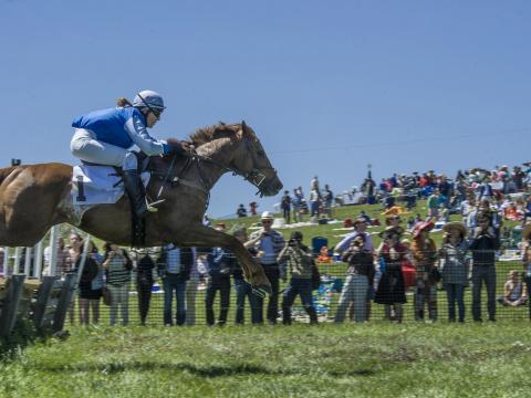 デラウェア州ウィルミントンにあるウィンタートゥールのポイントトゥポイントで開催される馬の障害飛び越えイベント