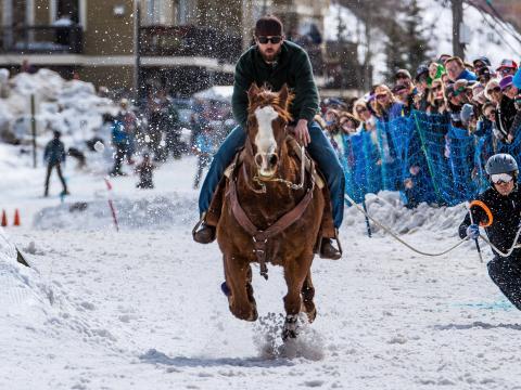 ウェストイエローストーンのスキージョリング・ウェスト・チャンピオンシップで馬に引かれるスキージョリング